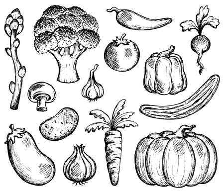 Vegetable theme collection Vector