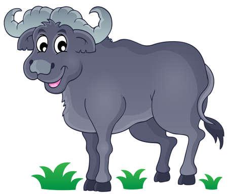 African bull
