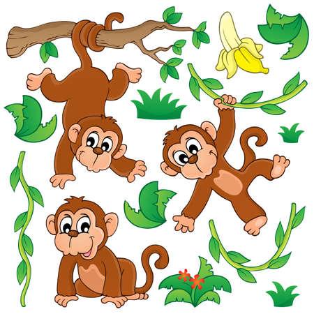 Monkey theme collection  Vector