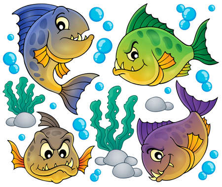 freshwater fish: Piranha fishes collection