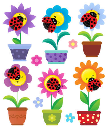 insecto: Flowerpots with flowers and ladybugs - eps10 vector illustration. Vectores