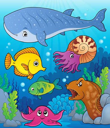 Coral fauna topic image