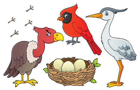 Birds topic collection 1 - eps10 vector illustration.