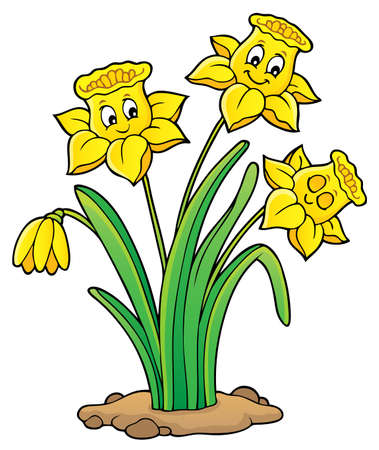 Narcissus flower theme image