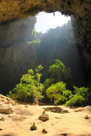 Light shining on the jungle in a cave, Thailand
