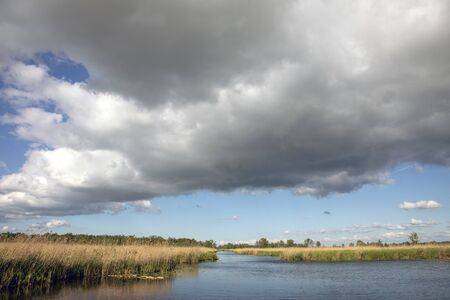 A ditch across the yellow reed fields under a light blue sky with heavy rainy clouds in de Nieuwkoopse plassen in the Netherlands.