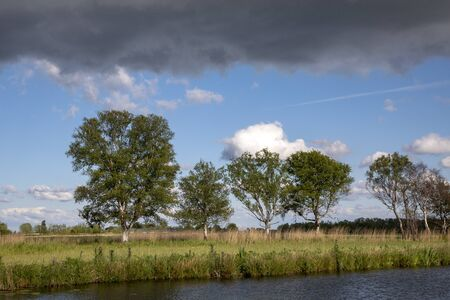 Dark looming thunder clouds above a ditch and a row of birches on the bank in the Nieuwkoop lakes in the Netherlands.