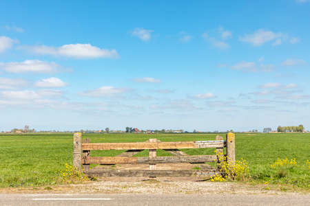 Closed gate in agricultural land, wooden in green meadow with high sky