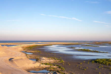 The Marker Wadden, located in the Markermeer, a lake in the Netherlands, wetland made, with blue cloudy sky. 免版税图像