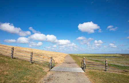 Dike with cattle grid along the coast of the island Schiermonnikoog on the wadden sea side in the netherlands