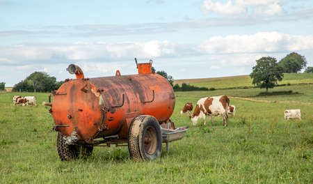 Manure tank in agricultural land, a farmyard, bright green meadow with cows and sky with clouds