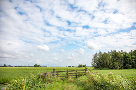 Fence gate that is closed in agricultural land, bright green meadow with high sky with clouds and clear horizon in the background.