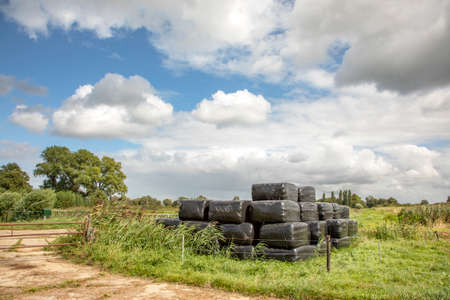 Grass compacted in silage bales in plastic, next to a path in nature and beautiful sky with white clouds.