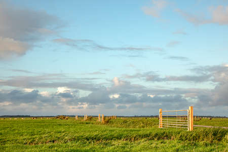New gates in farmland, in a row, evening sky with clouds, bright green meadow and clear horizon. 免版税图像