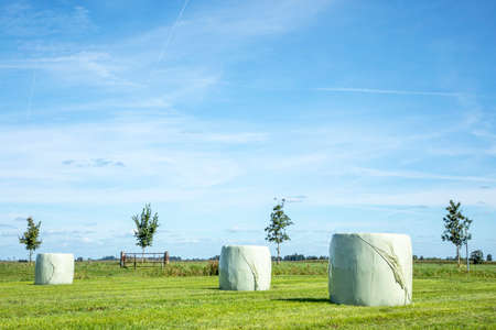 Three bales of hay, silage bales, wrapped in light green plastic stacked in a landscape, the horizon and contrail in the blue skies.