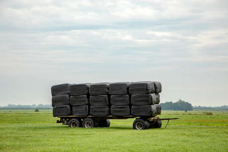 Bales of hay, silage bales, stacked on a trailer, wrapped in black plastic in a landscape with green grass and blue cloudy sky.