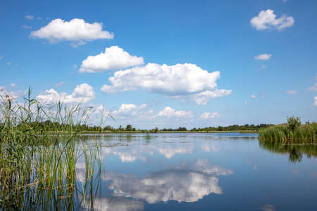 Ankeveen. The Ankeveense Plassen are a maze of pet holes and layers. A jumble of islands, narrow ditches and open water. A beautiful sky reflection in the water. 免版税图像
