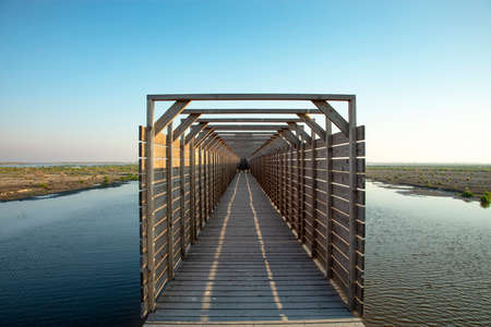 Bridge to bird watching hut on the Markerwadden. Wooden canopy on a jetty that leads to the entrance of a bird's eye view on artificial islands in the Markermeer. 免版税图像