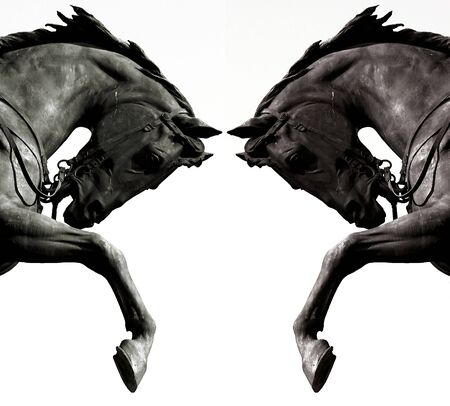 contrast: Twin horses
