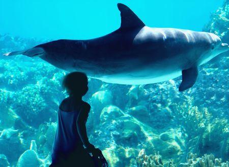 Le conte de fées d'un enfant et un dauphin  Banque d'images