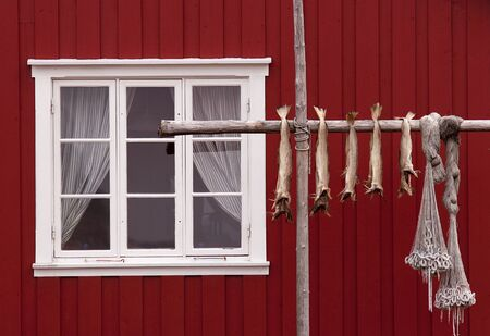 Norwegian house, stockfishes and  fishing nets Stock Photo - 1694619