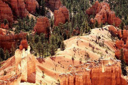 Bryce Canyon National Park, Utah, USA photo