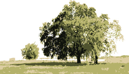 vector - tree landscape, isolated on white