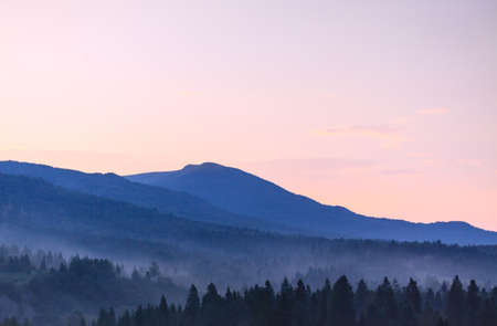 Mountains and forest fog, wild region in Bieszczady National Park