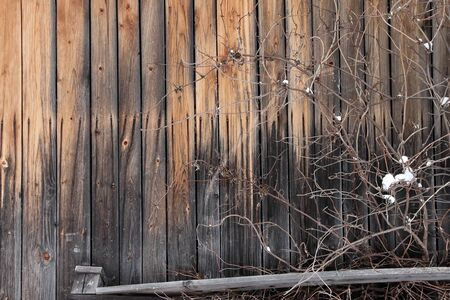 rustical: Rustic wooden fence and a pile of tree branches