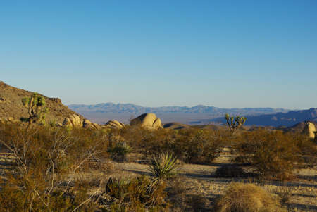 Rock formation and Desert View, Joshua Tree National Park, California Stock Photo - 12520867