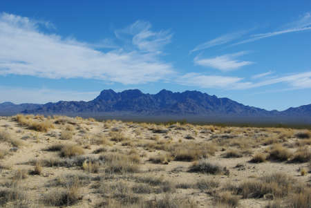Mojave Dunes and Providence Mountains, Mojave National Preserve, California Stock Photo - 12520789