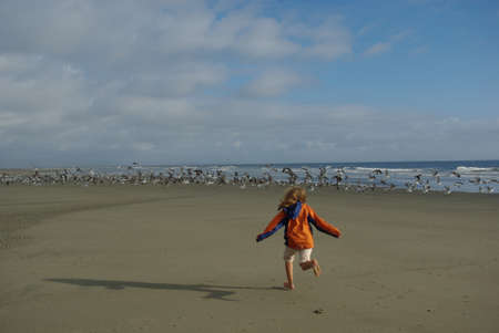 Girl running to seagulls on beach, Pacific Coast, Washington