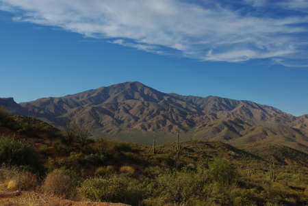 four peaks wilderness: Saguaros and mountains of Four Peaks Wilderness Area, Arizona Stock Photo