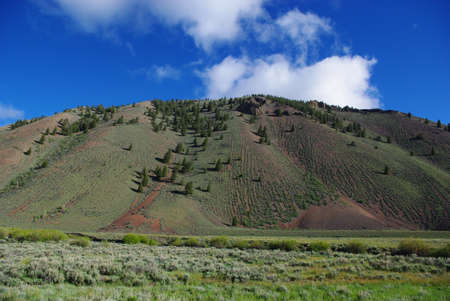 challis: Prairie, pines and mountains in high valley, Salmon Challis National Forest, Idaho