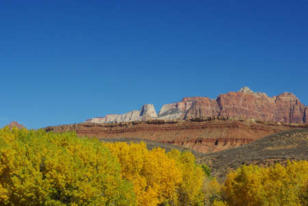 Autumn foliage, red and white rocks near Zion National Park, Utah