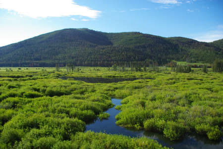 Green high mountain valley with streams and lake, Salmon Challis National Forest, Idaho photo