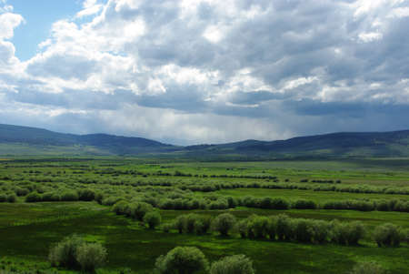 Green valley near Polaris, Montana photo