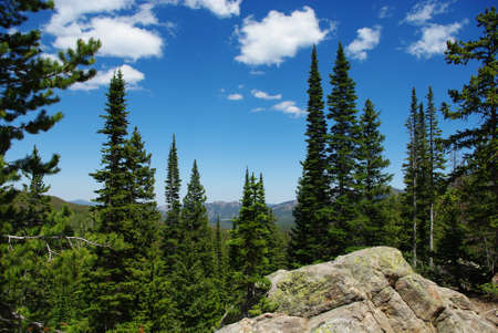 rocky mountains colorado: Rocks, forests and Rocky Mountains, Colorado