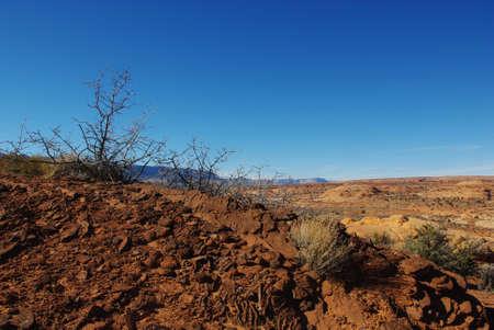 mountain peek: Red rocks and dry plants with a view near Peek-a-boo slot canyon, Utah