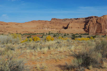Red rock walls and yellow autumn foliage near Zion National Park, Utah Stock Photo - 12906925