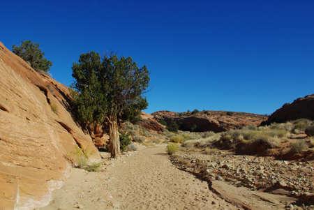 Hiking trail near Peek-a-boo slot canyon, Utah photo