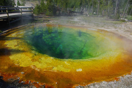 Colours of Morning Glory Pool, Yellowstone National Park, Wyoming