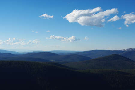 Vast mountain forests, Colorado Stock Photo