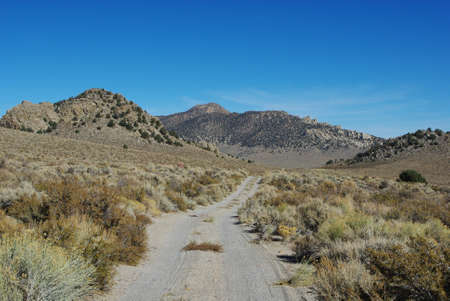 inyo national forest: Sandy jeep road, Inyo National Forest, California Stock Photo