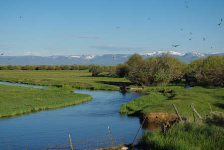 Blue water, ranchland, birds and high Rockies, Colorado Stock Photo