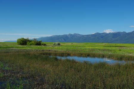 Wetlands south of Flathead Lake, Montana Stock Photo