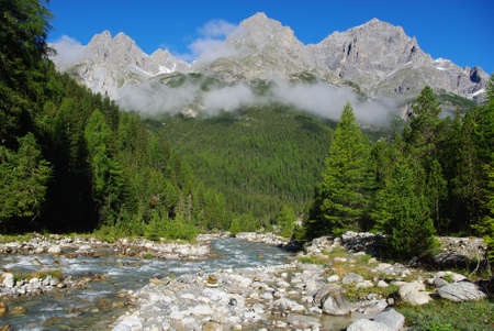 Mountain torrent, forest and mountains near S-Charl, Switzerland Stock Photo - 13553089