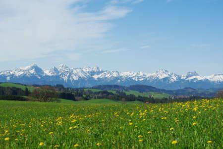 Meadows and Alps, Bavaria, Germany Stock Photo