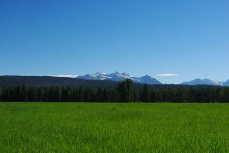 bowman: Montagne Rocciose nei pressi di Bowman Lake, Montana
