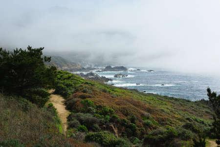 Pacific Ocean shore, California Stock Photo - 13849022
